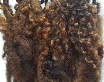 Wool locks sale buy 3 get 1 free Dark Brown separate curls hand-dyed 1 oz.