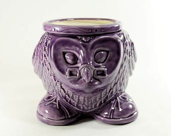 Wise Owl Planter African Violet Pot Purple