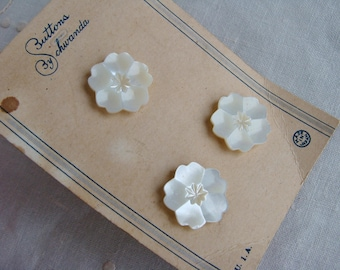 Set of 3 Vintage Carved Mother of Pearl Button on Original Card by Schwanda