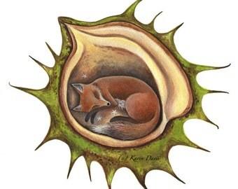 Fox Chestnut. Art print/sleepy fox/conker/nature/whimsical/by Karen Davis