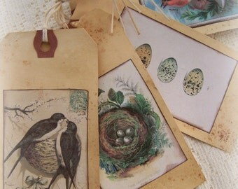 Handmade Bird Gift Tags Vintage Bird and Nest  Gift Tags All Occasion Gift Tags Vintage Bird Decor Vintage Bird Bookmark Floral Gift Tags
