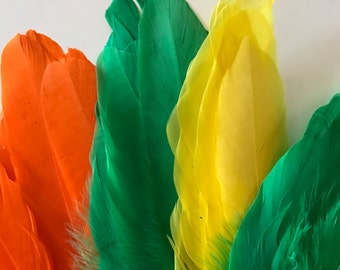 GRAB BAG  Miscellaneous Goose Feathers  / 04