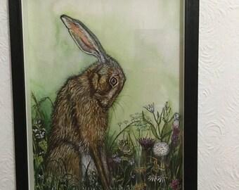 Hare Art Print - Spacer Framed
