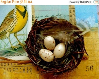 ON SALE 8 Sweet speckled tan eggs