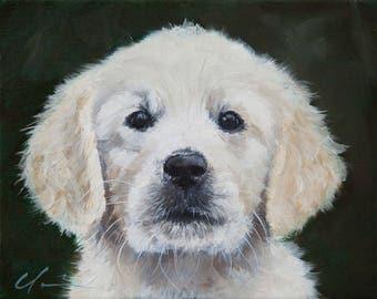 White, Yellow Golden Retriever Puppy, Dog, Original Painting by Clair Hartmann
