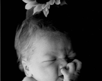 INFANT with SUNFLOWER Black & White Print Photograph