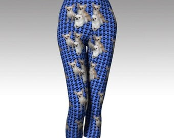 Chihuahua Capri Pants in Pink Or Blue