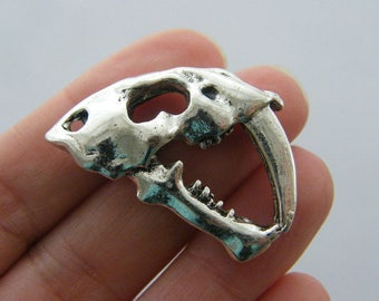BULK 5 Saber tooth tiger skull charms antique silver tone A491