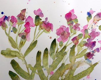 Vaccaria Flowers Original Watercolor Painting by Angela Moulton 8 x 10 inch with 11 x 14 inch Mat