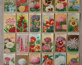 Antique botanical prints 24 French Flower Seed Packet Labels cute flower pictures with bright illustrations (Set 1)