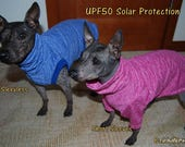 "UPF50 Sun Protection Suit for American Hairless Terriers, Chinese Crested, Xolos and all small dogs from 10"" - 18"""