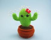 Cactus Crochet Pincushion - Cactus in Flowerpot - Desert Cactus - Amigurumi Succulent - DIY Crochet Cactus - Cactus Pincusion - Cactus