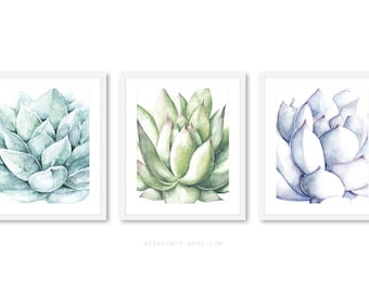 Succulent Art, Succulent Wall Art, Plant Art, Cactus Print, Plant Art, Succulent Print - Set of 3 Prints - Frames not included - 5x7 or 8x10