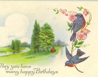 Pair of Bluebirds on Antique Birthday Postcard - Stecher Litho – Family Enjoying a Quiet Walk in the Countryside