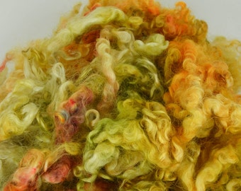 Wensleydale Long Wool Locks for Spinning and Felting Fiber- Colorway Hidden Path