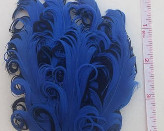 Royal Blue and Black Nagorie Feather Pad
