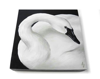 White Swan painting - monochrome black and white swan art - realistic bird painting - swan lake