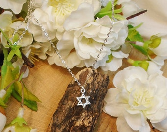 3-D Star of David Necklace, all Solid Sterling Silver, Tiny Weaved Style Star of David