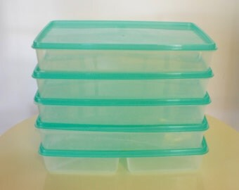 Partitioned Meal Keepers —  Set Of 5