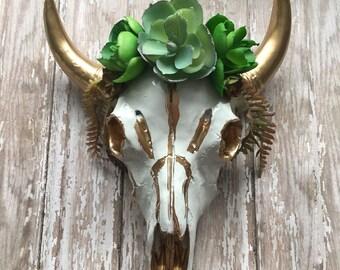 Gorgeous spring succulent bullskull