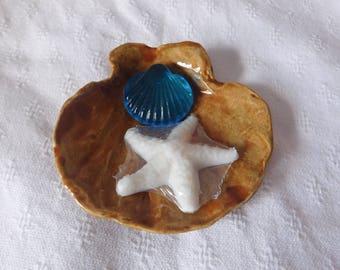 Seashell Soapdish