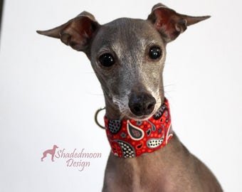 Italian Greyhound Collar - Paisley Red and Grey with Grey satin lining ( measurements essential) see item details iggy collar martingale