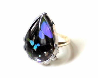 Purple & Black Butterfly Wing Sterling Silver Ring, Graphium Weskei Butterfly, Purple Spotted Swallowtail