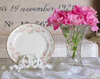 Prettiest POPE GOSSER Pink Roses PLATE, Shabby Chic, Gold Trim, Tea Time, Dessert Plate