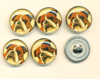 Vintage  Bulldog Dog Buttons - Set of 6 ca.1990's