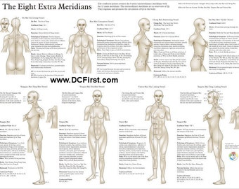 "Eight Extra (Extraordinary) Meridians Poster 18"" X 24"""