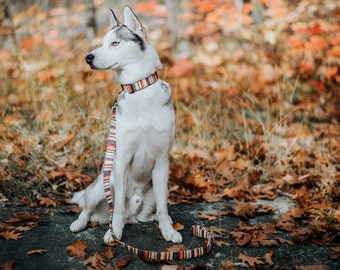 Bohemian Striped Woven Dog Leash - brown, creme white, yellow, orange - Antique Brass