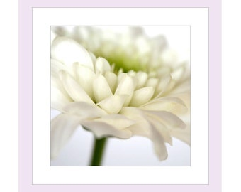 Flower Birthday Photo Card, Chrysanthemum Card, Flower Notecard, Floral Birthday Card, White Birthday Card, Note Cards