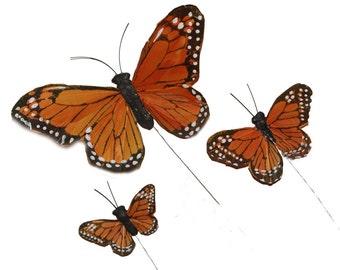 Assortment Butterflies A 36 pc DISCOUNT PRICE,BF126, BF720, BF2420, Feather Butterflies, Monarch Butterflies, Wedding Butterflies