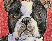 Boston Terrier Art - ACEO Boston Terrier - Original Dog Art - Dog Drawing