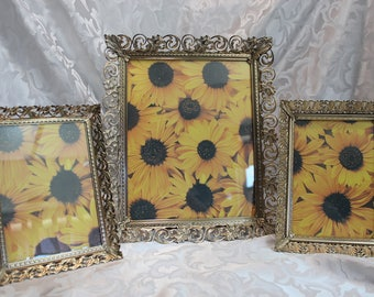 Ornate Gold Metal Picture Frames One 8 by 10 and Two 5 by 7 - Instant Collection