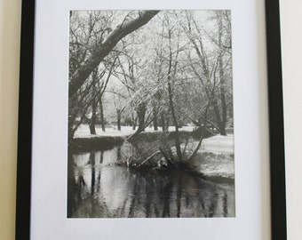 vintage black and white photography, art, artwork, wall art, wall decor, vintage photo, vintage black and white nature photography