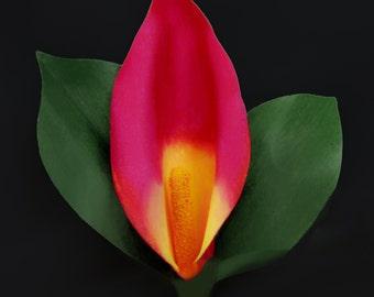 Red Calla Lily Pin