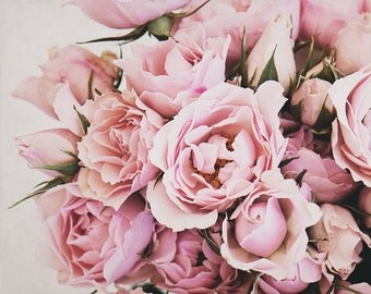Pink Rose Photograph, Shabby Chic Wall Decor, French Country Art, Modern Floral Print, Flower Photography, Feminine Living Room Artwork