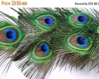 On Sale At Etsy Peacock Feathers,Seven All Seeing Eye Feathers,Eyes Measure 2x2.5 in,18in in Length,Weddings,Prom.Shower,Center Pieces,Corsa
