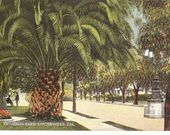 Vintage Postcard...California, Los Angeles- St. James Park..Unused...no. Ca0022
