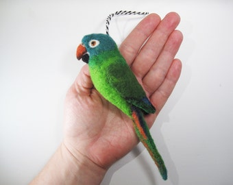 Blue-crowned parakeet, blue-crowned conure Needle Felted Bird Ornament
