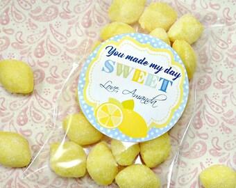 Personalized Lemonade Stickers (12) Lemonade Birthday Party-Treat Bag Stickers-Favors-Lemonade Labels-Candy Bag Stickers-Candy Treat Bags