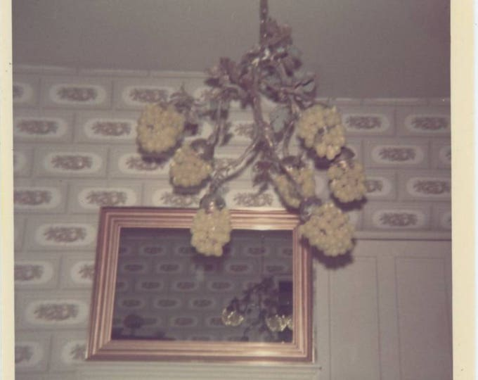 Vintage Snapshot Photo: Bunches of Grapes Chandelier & Mirror Reflection, 1970s (75577)
