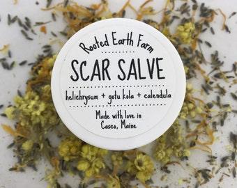 Scar Salve - Acne Scars - Injury Scars - Cuts and Scrapes - Tattoo Balm - Acne Scar Cream - Scar Cream