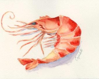Jumbo Shrimp original watercolor painting seafood shellfish