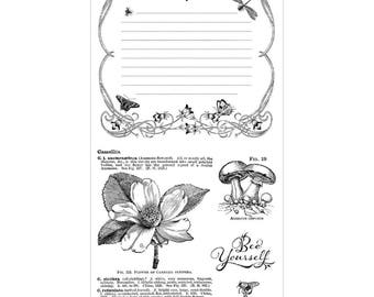 Graphic 45 NATURE SKETCHBOOK 3 Cling Stamps IC0376S 1.cc55
