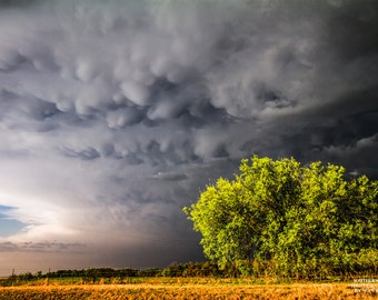 Bright Art Print, Sky Photo, Nature Sky Print, Ardmore, Mammatus, Stormy Skies, Green Trees, Business Print, Plains Photo, Bubbly, Contrast