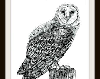 Printable Wall Art: 5 x 7 Barn Owl Duo