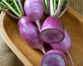 VRCRD)~BRAVO DAIKON Radish~Seed!!~ ~~~~~Unique Purple!!
