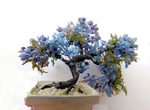 kit jacaranda bonsai from earthscapesbyheath on etsy studio. Black Bedroom Furniture Sets. Home Design Ideas